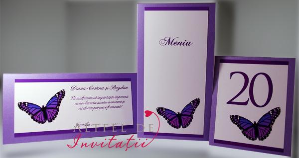 Papetarie de nunta Fluture