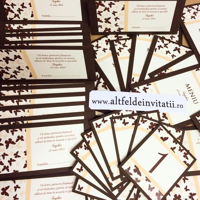 Invitatii de nunta, meniuri, numere de masa Roma cu fluturi