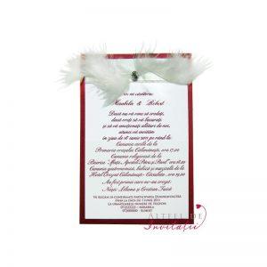 Invitatia de nunta Te-am gasit este accesorizata cu pene si o petricita stralucitoare - altfeldeinvii.roitat